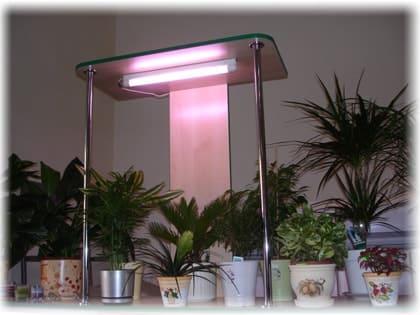 Подсветка комнатных растений ветрикальная лампа