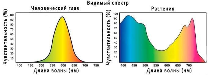 Спектр освещения